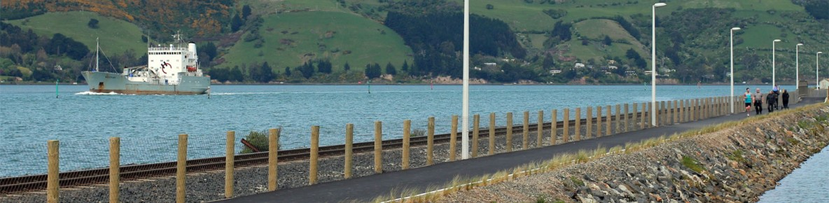 sh88 dunedin to port chalmers walking and cycling path project banner
